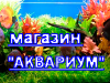 АКВАРИУМ, магазин Воронеж
